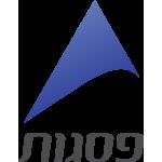 פסגות_logo